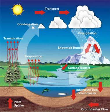 Picture of the Earyh's Water Cycle